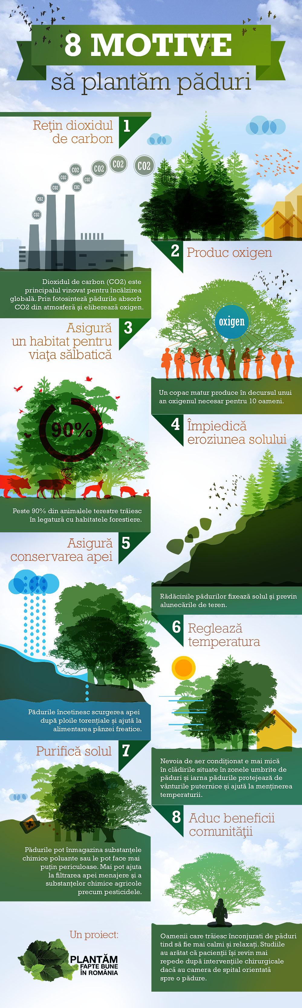 Motive pentru a planta copaci
